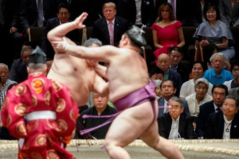 Tramp sumo güləşi yarışmasında