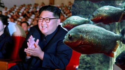 Şimali Koreyada daha bir dəhşətli edam
