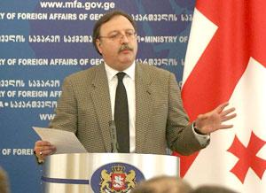 """Qriqol Vaşadze: """"Gürcüstanda hakimiyyət """"bolşevik"""" terroruna başlayıb"""""""