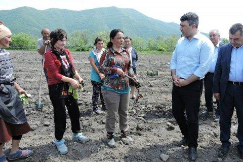 Kənd Təsərrüfatı Nazirliyinin sistemsiz fəaliyyəti ölkədə bahalıq yaradıb