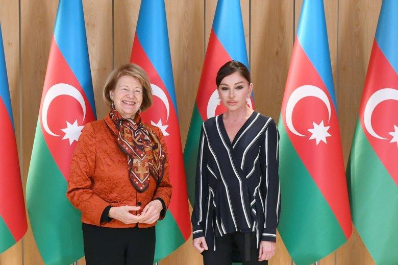 Mehriban Əliyeva Britaniya Baş Nazirinin Azərbaycan üzrə ticarət elçisi ilə görüşdü
