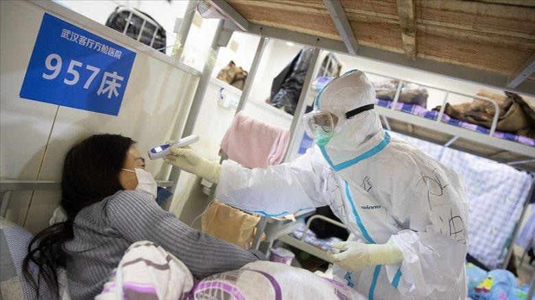Daha bir ölkədə koronaviruslu  xəstə müəyyən edilib