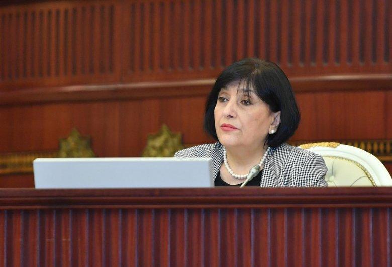 """Spiker: """"Karantin rejiminə görəbölgələrdən deputat köməkçilərini çağıra bilmədik"""""""